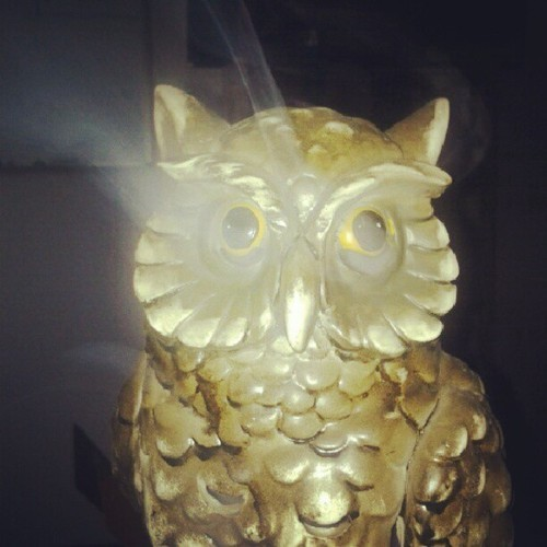checkerz:  #owl #incense burner. He replaced Father Wisdom.  owl incense burner hola at me