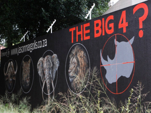 "nationalpost:  All of Mozambique's remaining rhinos killed by poachers The last known rhinoceroses in Mozambique have been wiped out by poachers apparently working in cahoots with the game rangers responsible for protecting them.The 15 threatened animals were shot dead for their horns last month in the Mozambican part of Great Limpopo Transfrontier Park, which also covers South Africa and Zimbabwe.They were thought to be the last of an estimated 300 that roamed through the special conservation area when it was established as ""the world's greatest animal kingdom"" in a treaty signed by the three countries' presidents in 2002. (Denis Farrell / AP Photo)"