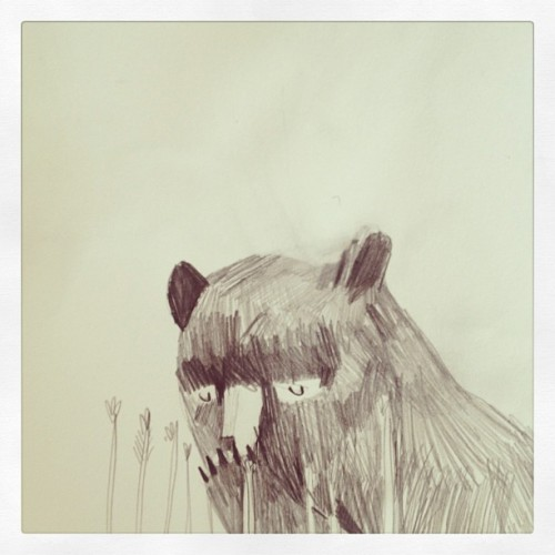 dickvincent:  Sketchbook bear