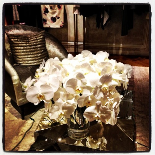 #Orchids In The Oh So Luxe #Dior Boutique @Bergdorfs (at Bergdorf Goodman)