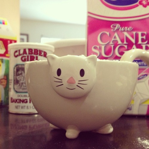 Cat/food holder! What will me and kitty make? 🍰🍩🍞🍪💣? STAY TUNED!