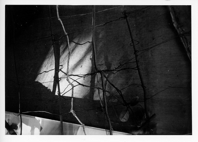 #268 Darkroom print - shadow play on Flickr.Smena 8M, Kodak TX400 Arista EDU Ultra RCVC, 5x7