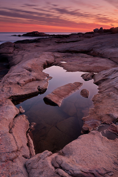 oecologia:   Tide Pool Geometry: Narragansett, RI by Mike Blanchette on Flickr.
