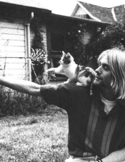 kierantrip:  Kurt Cobain and a kitten. That is all.