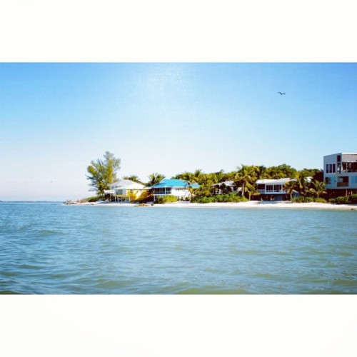 #sanibel #island #florida if I could teleport….