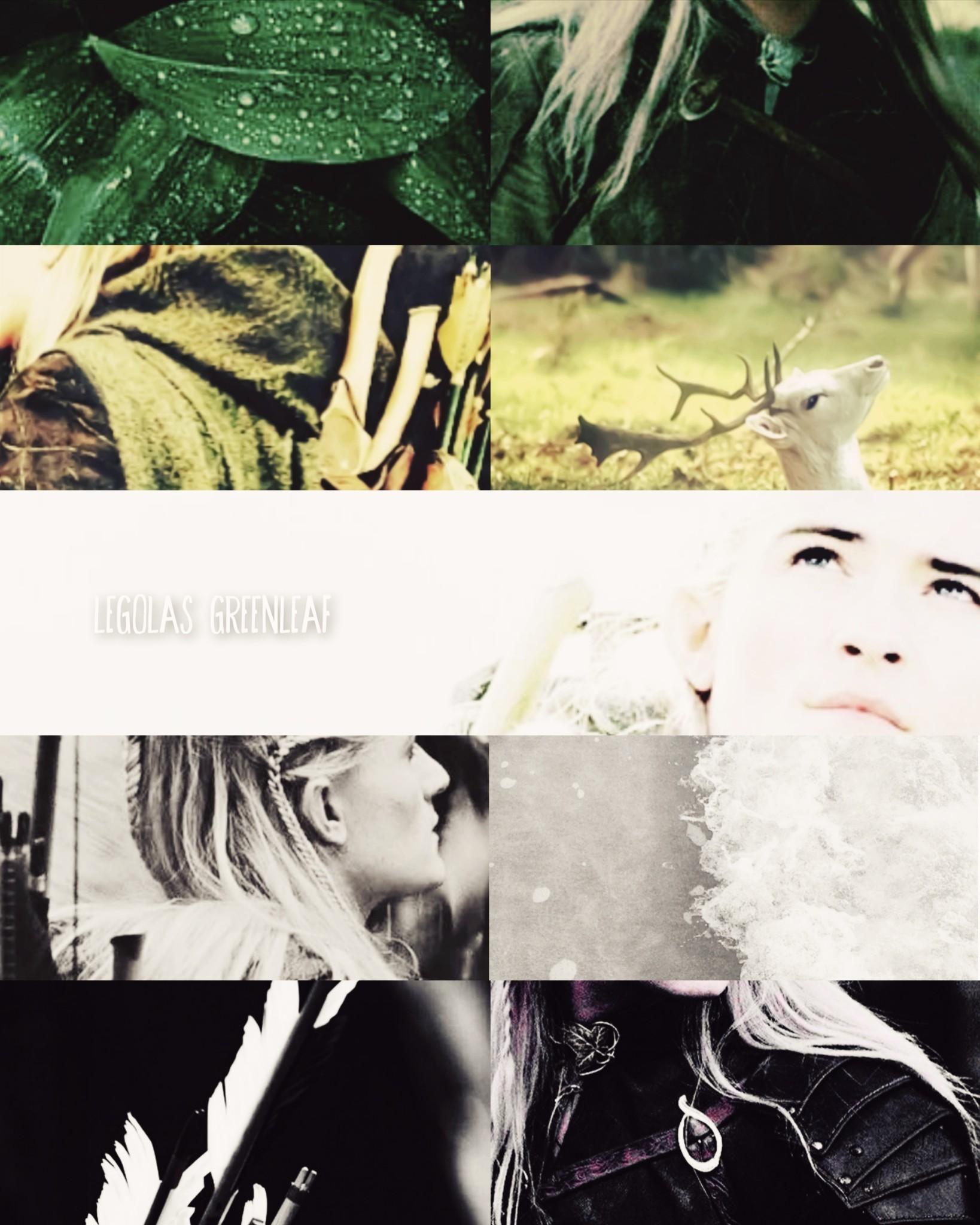Tumblr media
