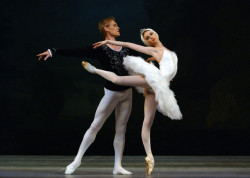aurelie-dupont:  Igor Zelensky and Svetlana Zakharova in Swan Lake Photo © Robbie Jack