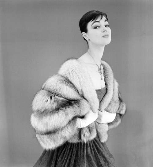 theniftyfifties:  Ivy Nicholson wearing a silver fox stole, 1955.