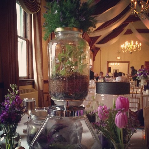 How pretty are these terrarium #wedding centerpieces?