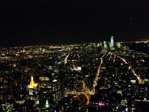 Top of the Empire State Building. It's alright, I guess…
