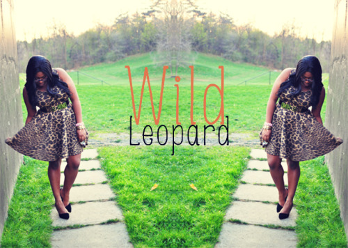 Love Hartley: WILD LEOPARDby Cymone Hartley http://bit.ly/Xgw9Pi