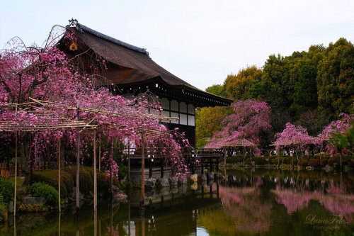 Garden of the Heian-Shrine 02 by *LunaFeles