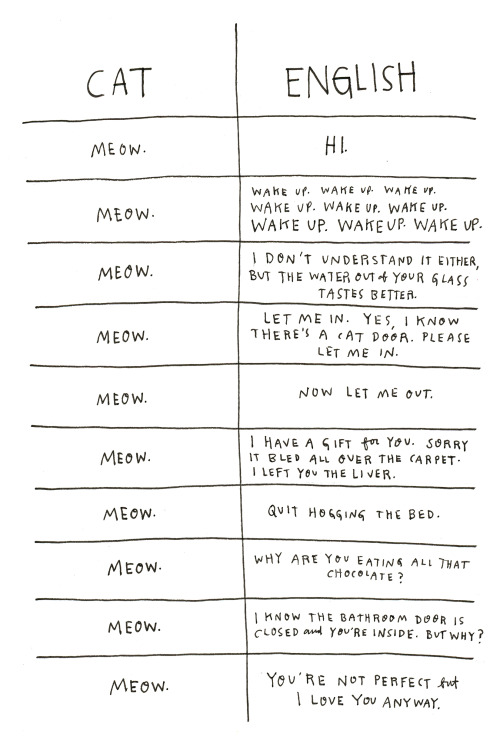 the-absolute-best-posts:  nevver: Cat Language   This post has been featured on a 1000notes.com blog.  Hahaha :)))