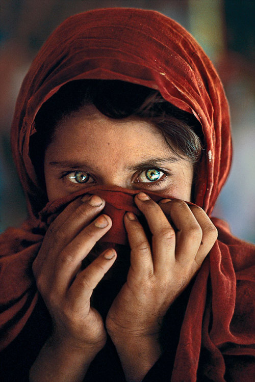 Sharbat Gula Nasir Bagh Refugee Camp Peshawar Pakistan (by Steve Mccurry)