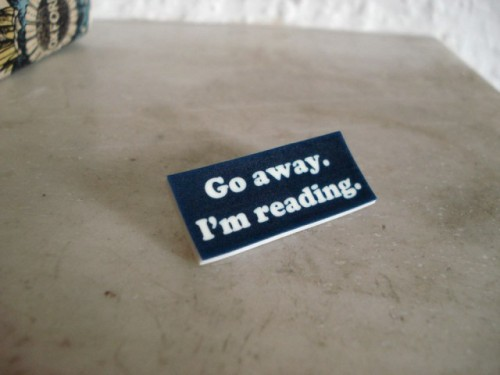 LEAVE ME ALONE, I'M READINGby Rachael Berkey http://bit.ly/YnXuDZ