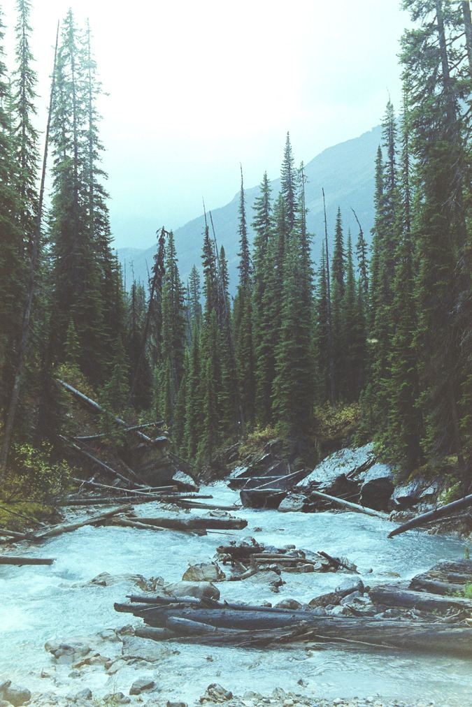 man-and-camera:  Yoho National Park, BC ➾ Luke Gram