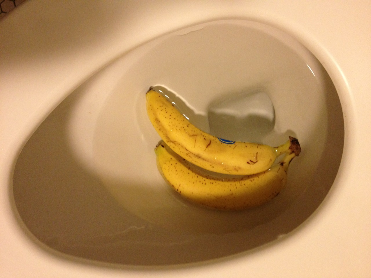 secondseal:  The shit is bananas.
