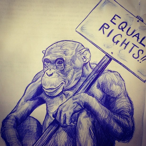 #drawing #sketch #equalrights #illustration #art #monkey
