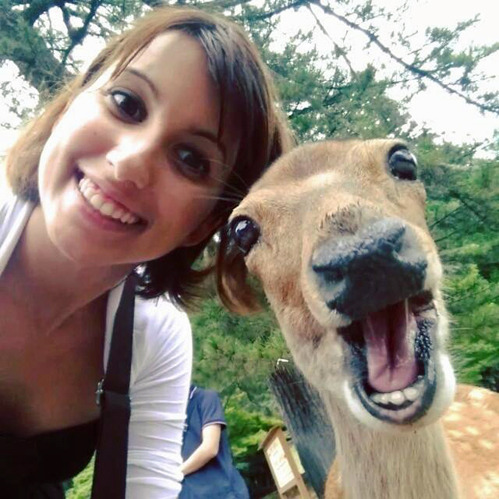 Deer Selfie [matchalattevlog]