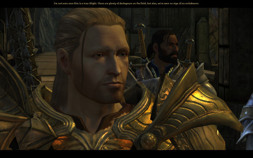 Random Cailan love. Screenshot from one of my Dalish playthroughs.