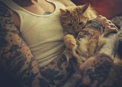Tattoos & kitties= naaww nomnom