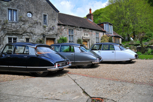pfandango:  Citroen DS Pallas 1969, DS Super 1972 & DS Pallas 1971 on Flickr. Citroen DS20 '69, DS21 '72 and DS Super '72www.ds21.co.uk