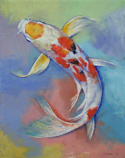 "creese:  ""Butterfly Koi Fish"" by Michael Creese"