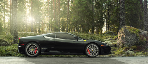 crash—test:  Scuderia Profile (by dmarty78)