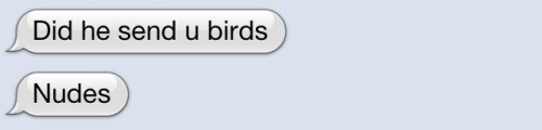 rosaparking:  he sent birds yeah
