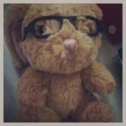 My little bunny from build a bear that I got for Christmas <3 #cutie #fluffy #gift #glasses #adorable #cuddly #love #instalikes #instalike #happy #favorite #toy #stuffed #animal #rabbit #bunny #pinknose