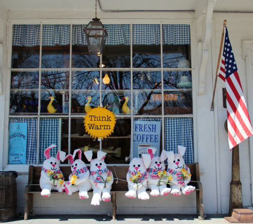 Brewster General Store in the Spring (by Mary Gray1)