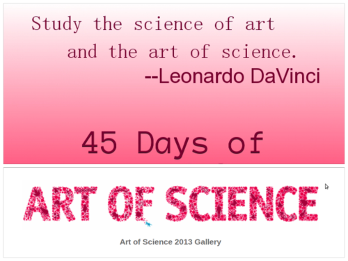 Day 1 The Art of Science exhibition explores the interplay between science and art. Both of these disciplines involve the pursuit of those moments of discovery when what is perceived suddenly becomes more than the sum of its parts. Each piece in this exhibition is, in its own way, a record of such a moment. This is the sixth Art of Science competition hosted by Princeton University. The 2013 competition drew 170 submissions from 24 departments. The exhibit includes work by undergraduates, faculty, staff, graduate students, and alumni. These 44 extraordinary images are not art for art's sake. Rather, they were produced during the course of scientific research. Entries were chosen for their aesthetic excellence as well as scientific or technical interest. We thank all those who submitted work to this year's competition. We are inspired by the breadth of their creativity both in their scientific research and in the artistic fruits of that research. Katherine Bussard, Peter C. Bunnell curator of the Princeton Art Museum; David Dobkin, Dean of the Faculty; Emmet Gowin, Professor of Visual Arts, Emeritus; Paul Muldoon, Howard G.B. Clark '21 University Professor in the Humanities; and Shirley M. Tilghman, President.  ~Princeton Art of Science