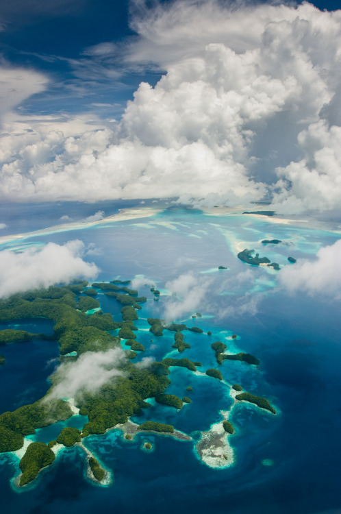 estimfalos:  Mark Kenworthy  Palau Rock Islands from the air
