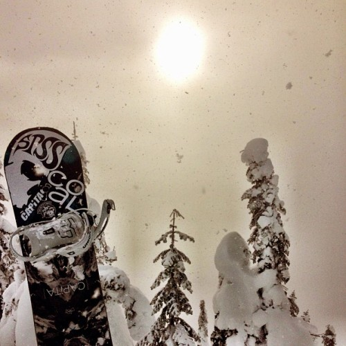 Tis the snowing sun @stevenspass @spssnw @coalheadwear #snowboaring (at Skyline Chair)