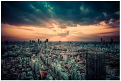 Google Japan's view of the city, photo by MySpace's Tom Anderson on Google+. Check out more pics in search this week here.