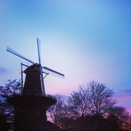 I still prefer the beautiful old windmills (bij Netherlands)