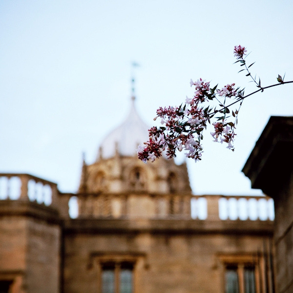 | ♕ |  Oxford at dusk  | by © vic xia