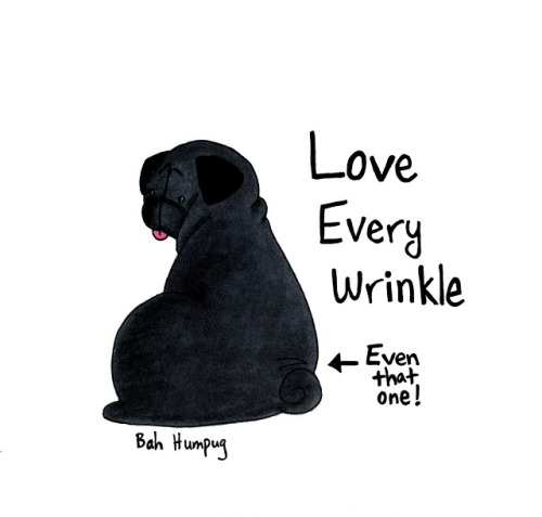 bahhumpug:  I'll be including black pugs in my store! (via Bah Humpug: Representing Black Pugs!)  I am more intrigued now