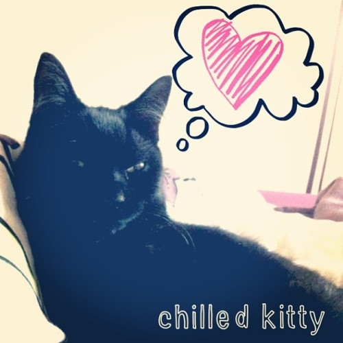 Loving my new app :) #kitty #cat #cute #kitten #sleepy #lazy #ABeautifulMess