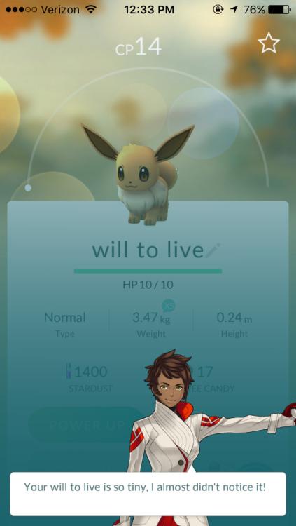pokemon-jokes   Tumblr