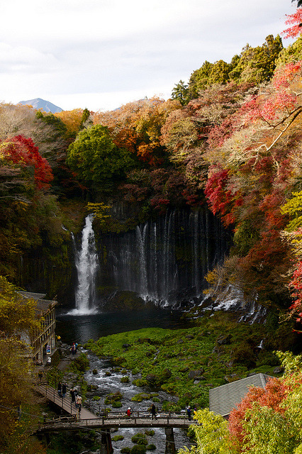Shiraito Falls, Fujinomiya, Japan photo via discolor