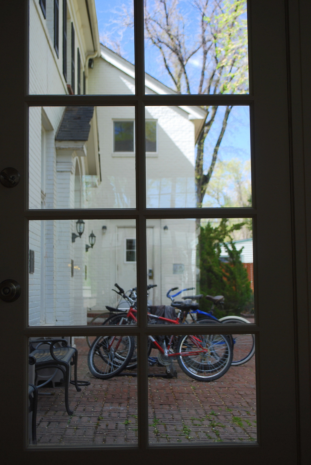 the bike in the window