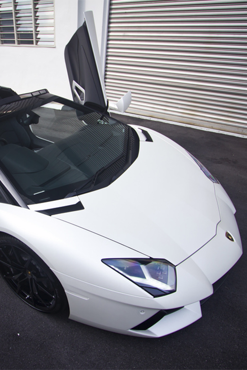 bejarj:  LP700 Roadster