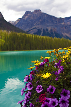 touchdisky:  Emerald Lake, British Columbia, Canada by AngeStar             …