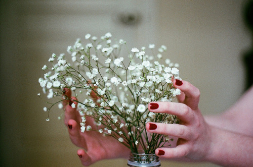 palides:  untitled by anne droid on Flickr.