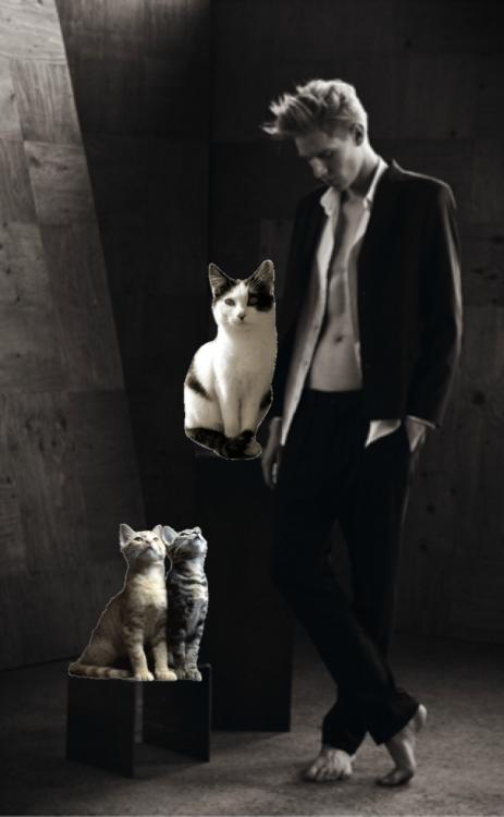 Na dnešek připadá Mezinárodní den ženského orgasmu a Mezinárodní den koček. Užijte si tedy #hot české modely z editorialů #MAUDhomme v obležení nejhoršího přítele člověka.