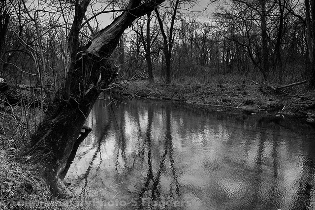 Creek on Flickr.Via Flickr: Pennypack Park, PA. Check out my shop:www.etsy.com/shop/CitySaint Like me on facebook.www.facebook.com/citysaintphoto