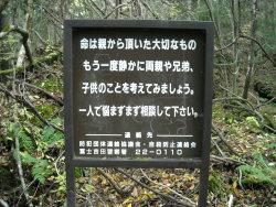 art-destruction:  Suicide Forest : Aokigahara (青木ヶ原), also known as the Sea of Trees (樹海 Jukai), is a 35-square-kilometre (14 sq mi) forest that lies at the northwest base of Mount Fuji in Japan. The forest contains a number of rocky, icy caverns, a few of which are popular tourist destinations. Due to the wind-blocking density of the trees and an absence of wildlife, the forest is known for being exceptionally quiet. The forest has a historic association with demons in Japanese mythology and is a popular place for suicides (54 in 2010) despite numerous signs, in Japanese and English, urging people to reconsider their actions.  It reads: Life is a gift you were given by your parents. Please think about them, the rest of your family, and any children you have. You don't have to suffer by yourself, please give us a call (the Fuji Yoshida police counseling service) and talk to us.