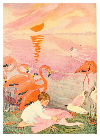 #ilustradores, #cesar_ojeda, #illustration, #flamingoes, #flamingo, #pink_flamingos, #flamingos