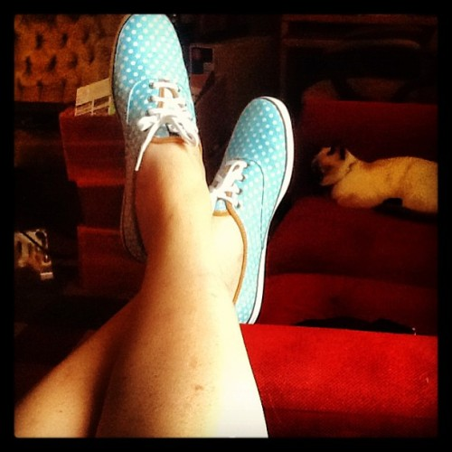 New babies. Love them. Sooo comfortable. Keds rule. #keds #kotd #kicks #kotd #potd #photooftheday #blue #polkadot #shoes #shoesoftheday #sotd